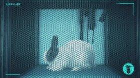 Кагевани: Понимание