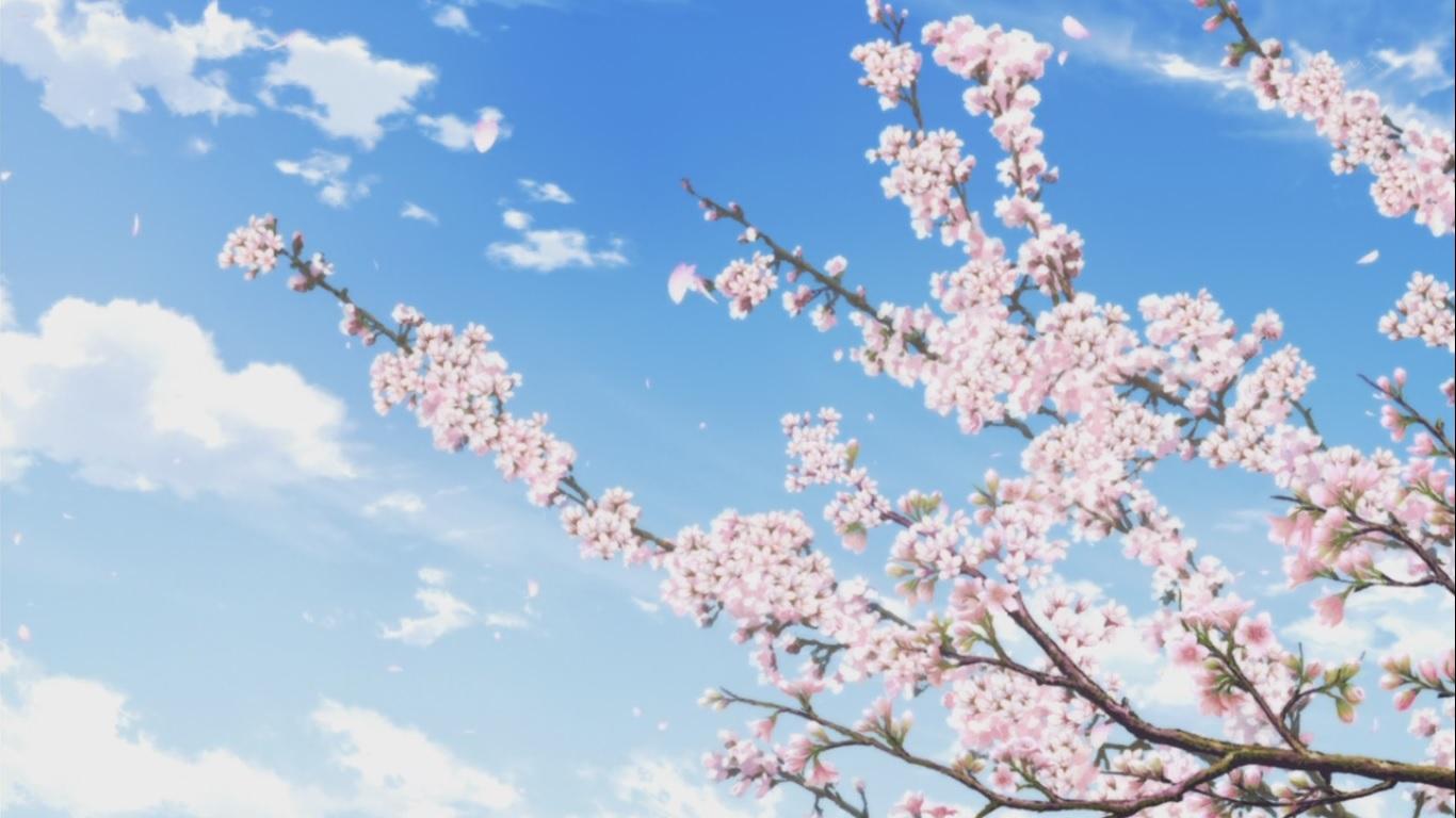 Картинки аниме цветы красивые движущиеся, спокойной ночи света