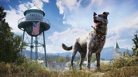 Кадры из игры Far Cry 5