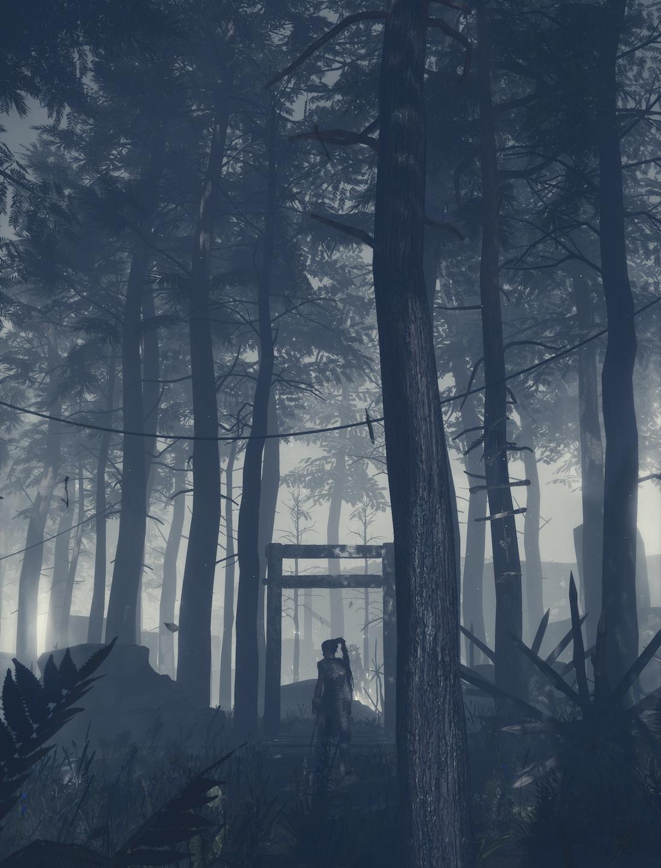 Hellblade: Senua's Sacrifice, кадр № 23