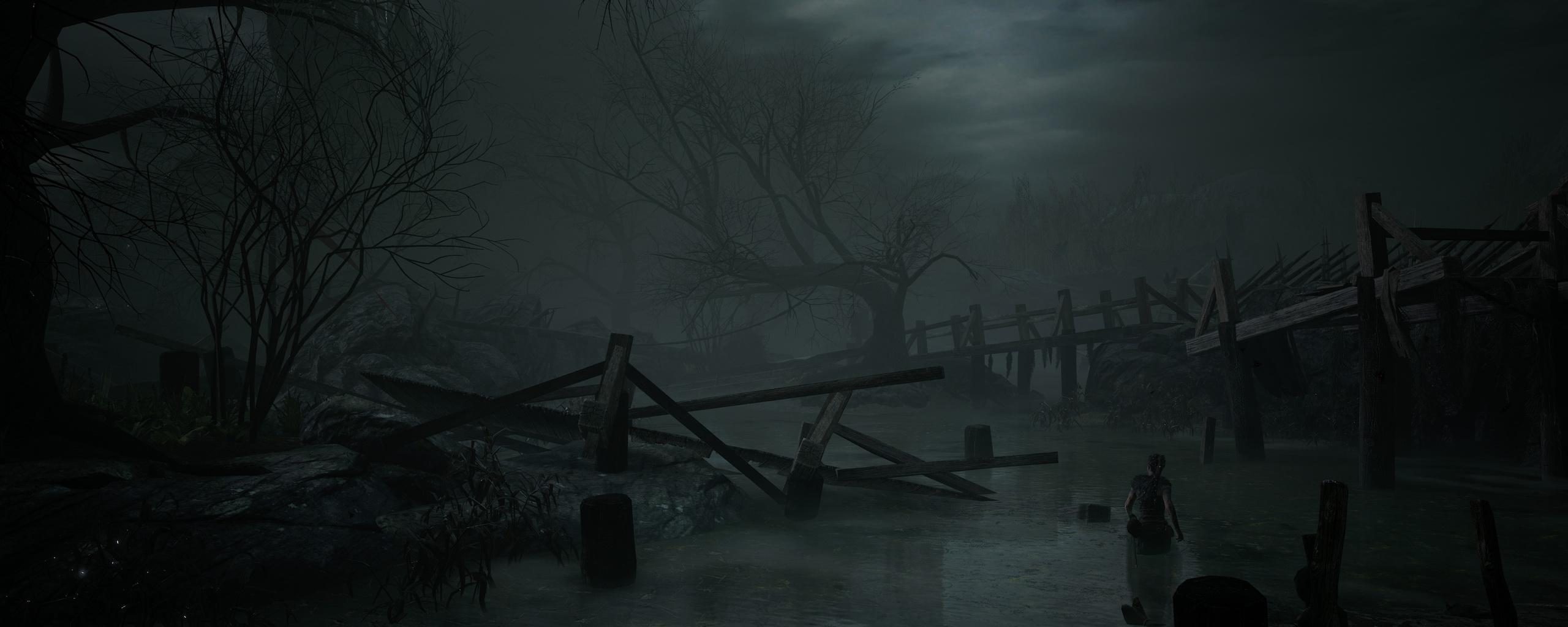 Hellblade: Senua's Sacrifice, кадр № 29