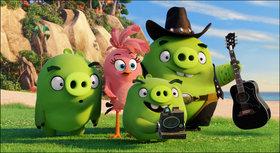 Кадры из фильма «Angry Birds в кино»