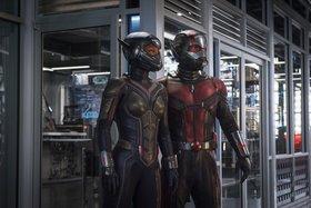 Кадры из фильма «Человек-муравей и Оса»