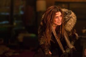 Дочь волка