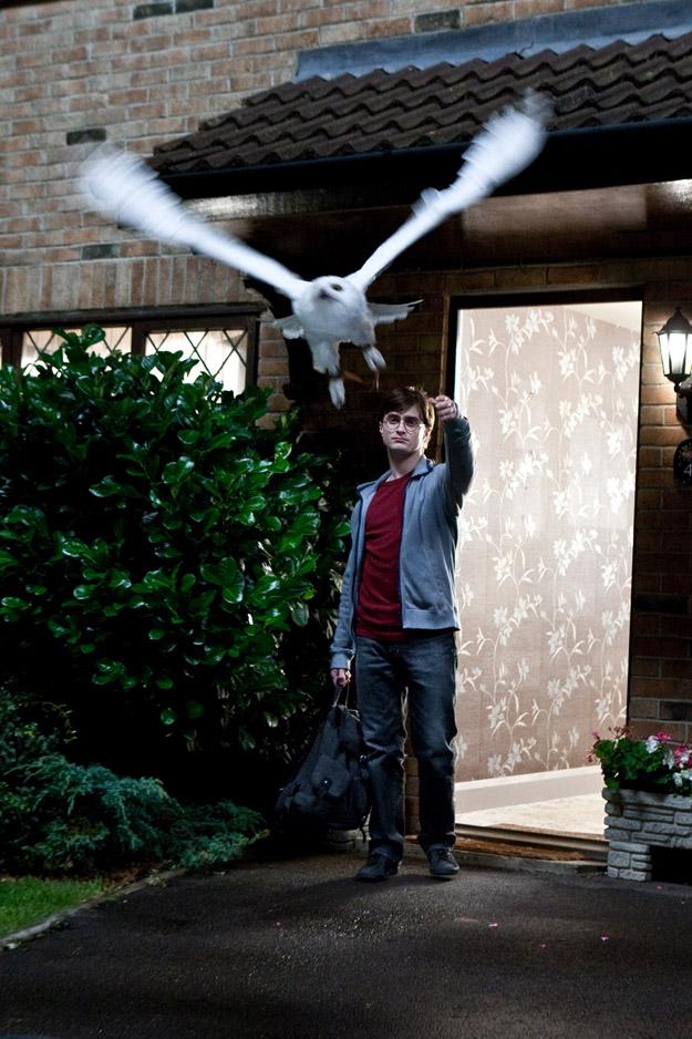 Гарри Поттер и Дары смерти. Часть 1, кадр № 19