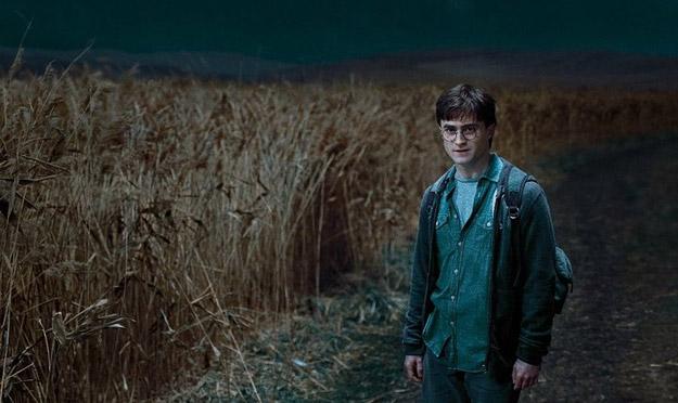Фильм «Гарри Поттер и Дары смерти. Часть 1» / Harry Potter and the ...