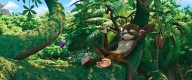 Зов джунглей
