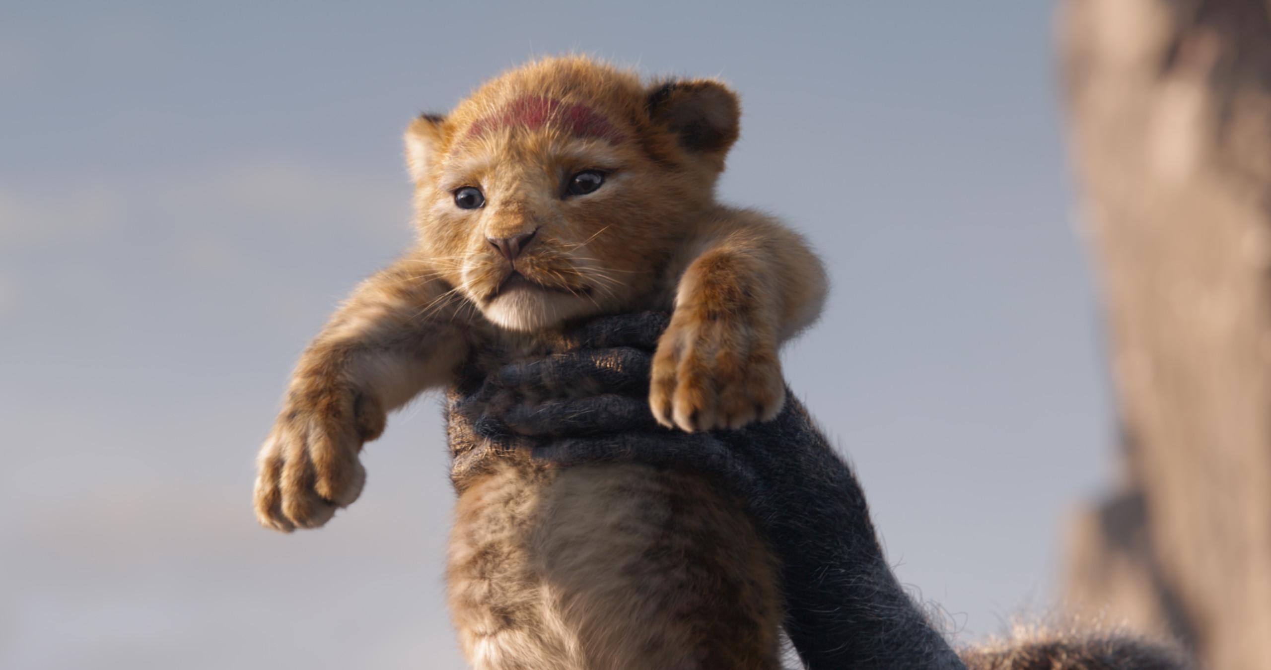 Король Лев, кадр № 9