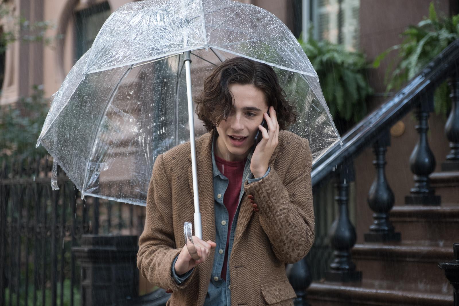 Дождливый день в Нью-Йорке, кадр № 5