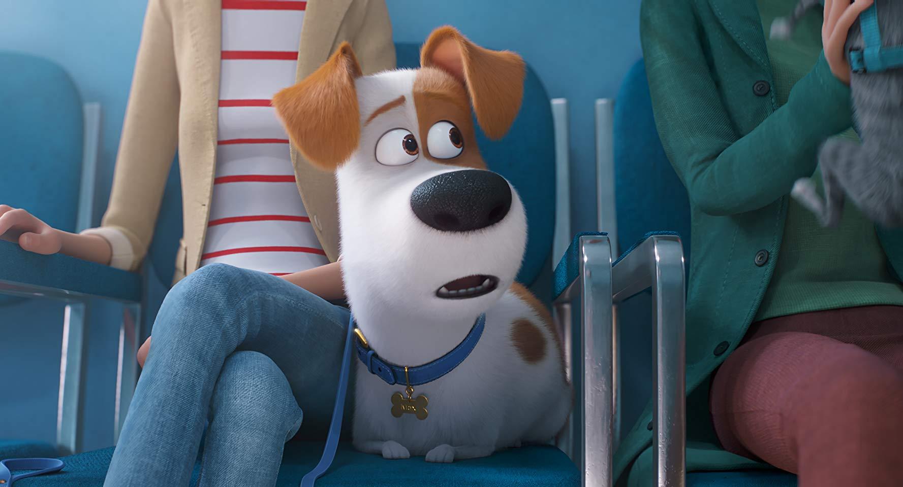 Новый трейлер мультфильма «Тайная жизнь домашних животных 2»