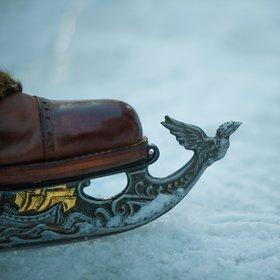 Серебряные коньки