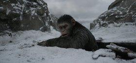 Планетa обезьян: Война