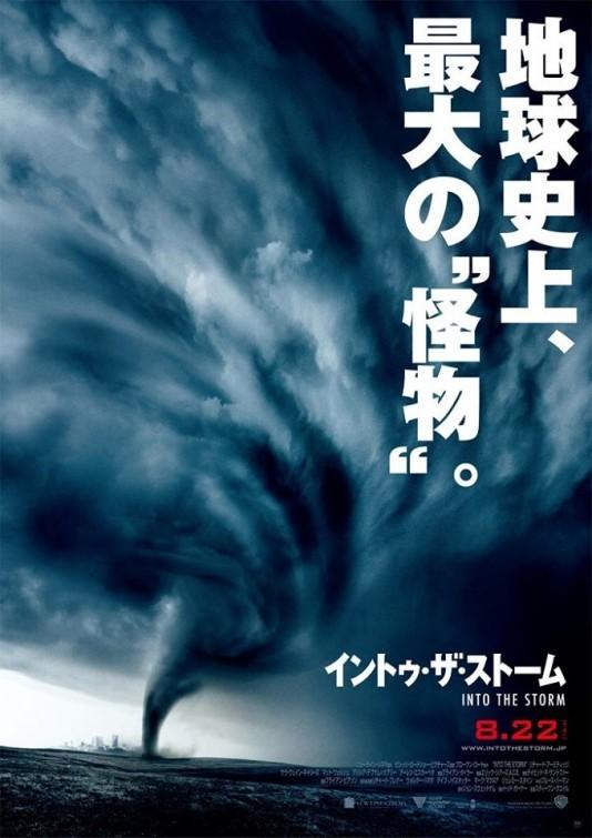 Навстречу шторму, постер № 2