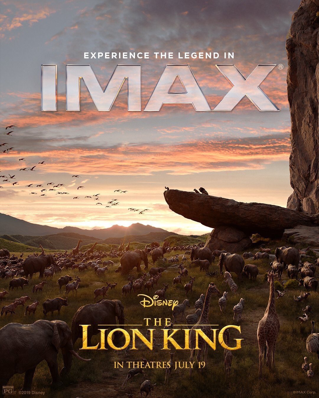 lionking2018_32.jpg