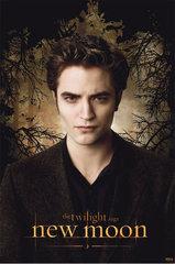 «Сумерки. Сага: Новолуние» (The Twilight Saga: New Moon)