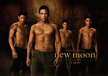 «Новолуние» (The Twilight Saga: New Moon)
