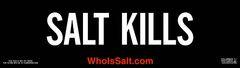 «Солт» (Salt)