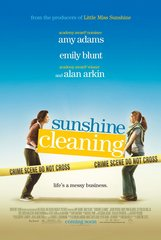 «Безупречная уборка» (Sunshine Cleaning)