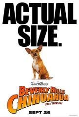«Чихуахуа из Беверли-Хиллс» (Beverly Hills Chihuahua)