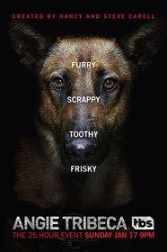 Постеры сериала «Энджи Трайбека»